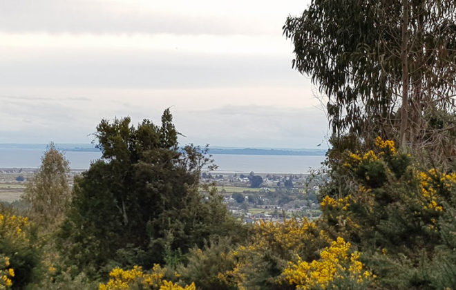 hacienda-chamiza-23-vista-aerea
