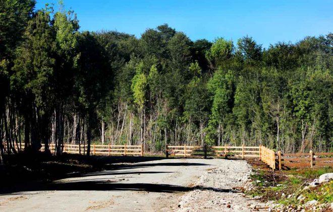 parcelas-hacienda-chamiza-entorno-1