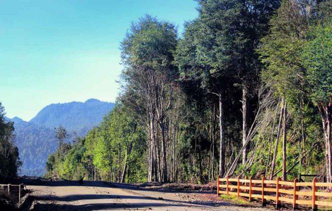 parcelas-hacienda-chamiza-entorno-10