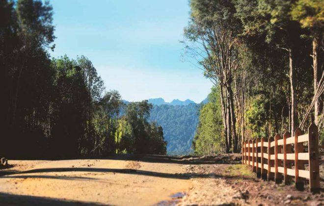 parcelas-hacienda-chamiza-puerto-montt-7
